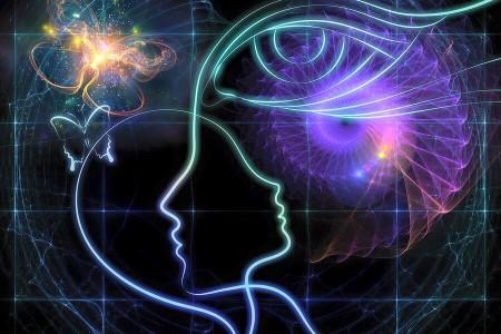 Особенности строения человека и ноосферы
