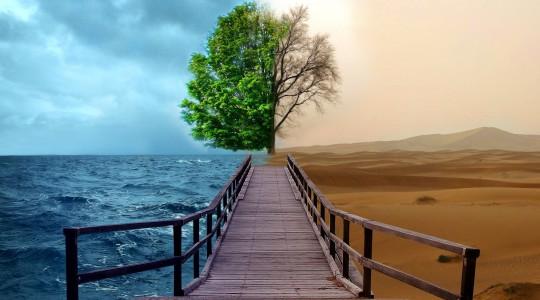 РАК – это поворотный момент в жизни человека, когда нужно сделать выбор: умереть или измениться