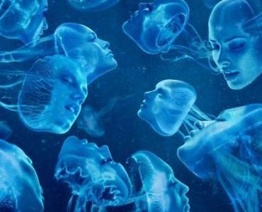 Фантомы в пространстве 4D