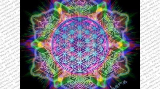 Нейронные сети фрактальной вселенной