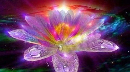 Практика раскрытия цветка любви в партнере