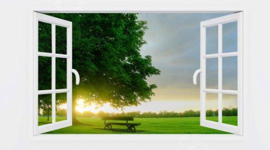 Практика «Распахнутое окно»