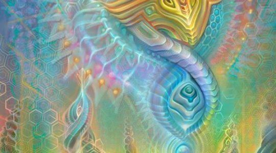 Соло-процессинг «Интеграция физической и нефизической частей»