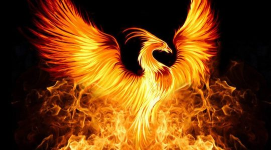 Полет Феникса,  Золотой мост и Портал 11/11: ускоренные энергии Вознесения в октябре и ноябре.